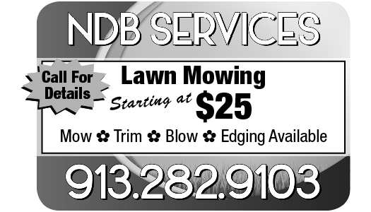 NDB Services